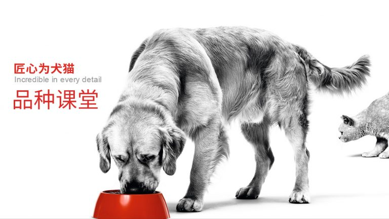 Pet food from Royal Canin