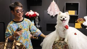 China Pet Industry expanding
