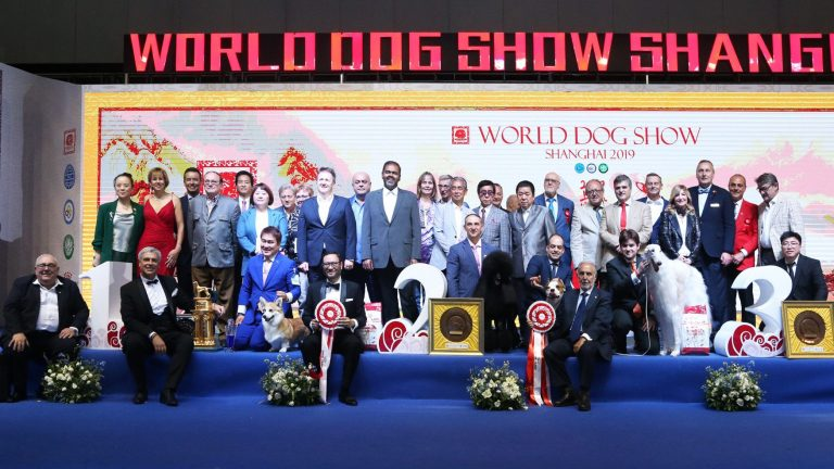 World Dog Show 2019 Shanghai