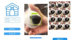 Dog Facial Recognition