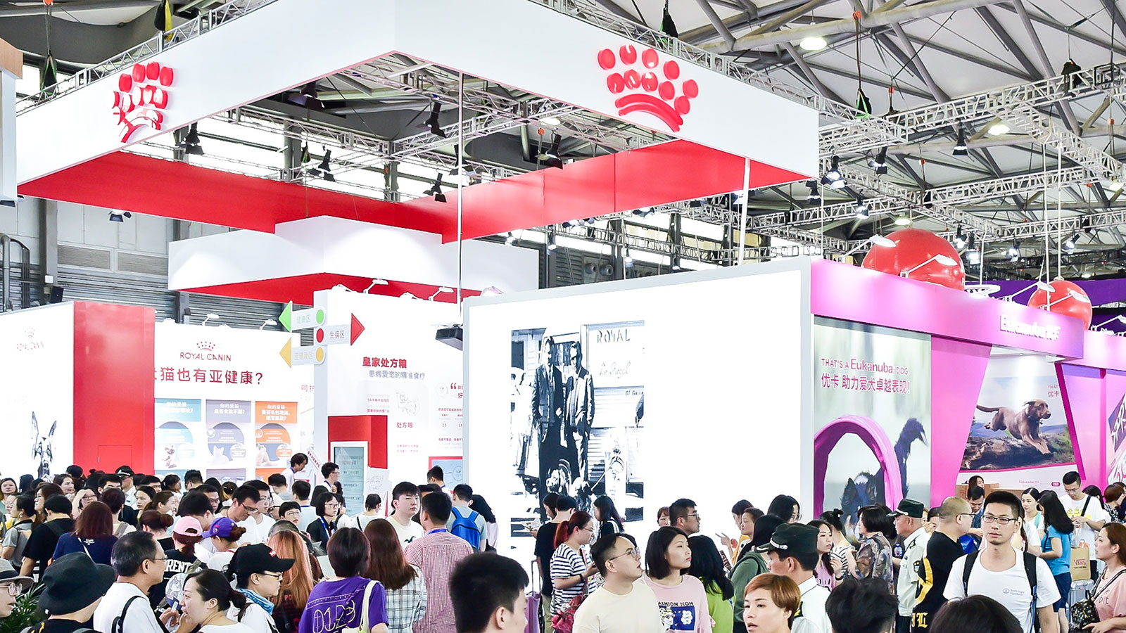 Royal Canin Wants Shanghai To Be China's Most Pet-Friendly City
