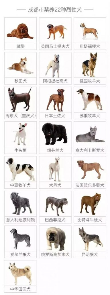 A list of breeds that can't be registered by pet owners in Chengdu