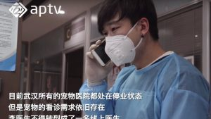 China pet industry against Covid-19