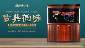 Sunsun China IPO